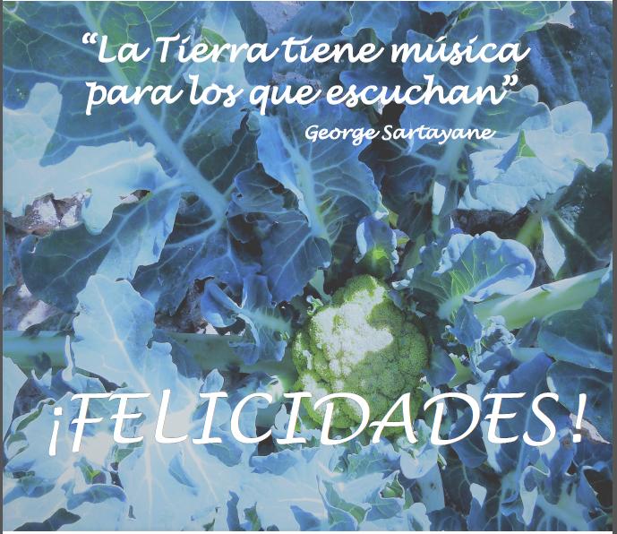 felicitacion-navidad-2016-biolibere-economato-ecologico