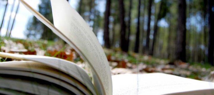 Relatos para el confinamiento: El hombre que plantaba árboles