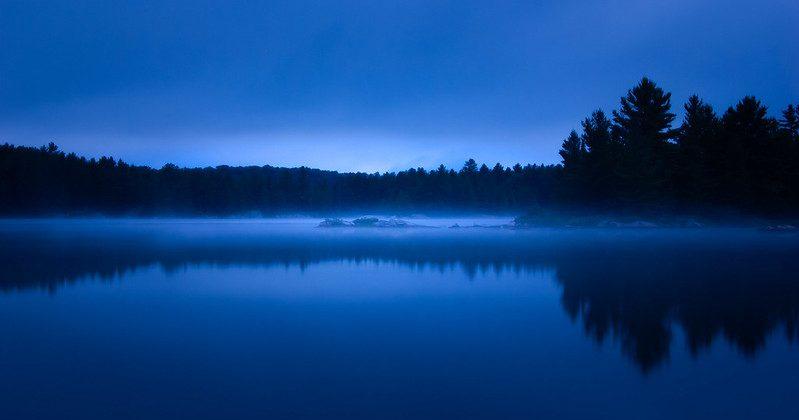 Relatos para el confinamiento: El sabio de Pelikan Lake, o una mirada lúcida al pasado